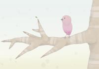 15_ocells.png
